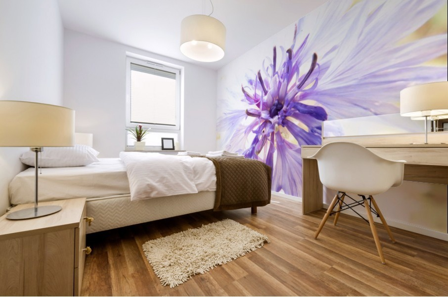 Purple Flower Burst Mural print