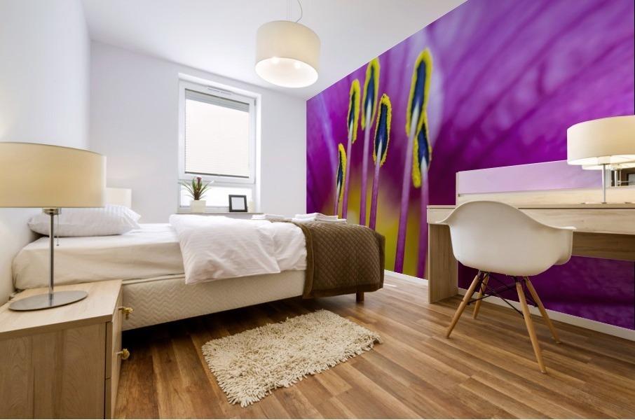 Macro of Purple Day Lily Stamen Mural print