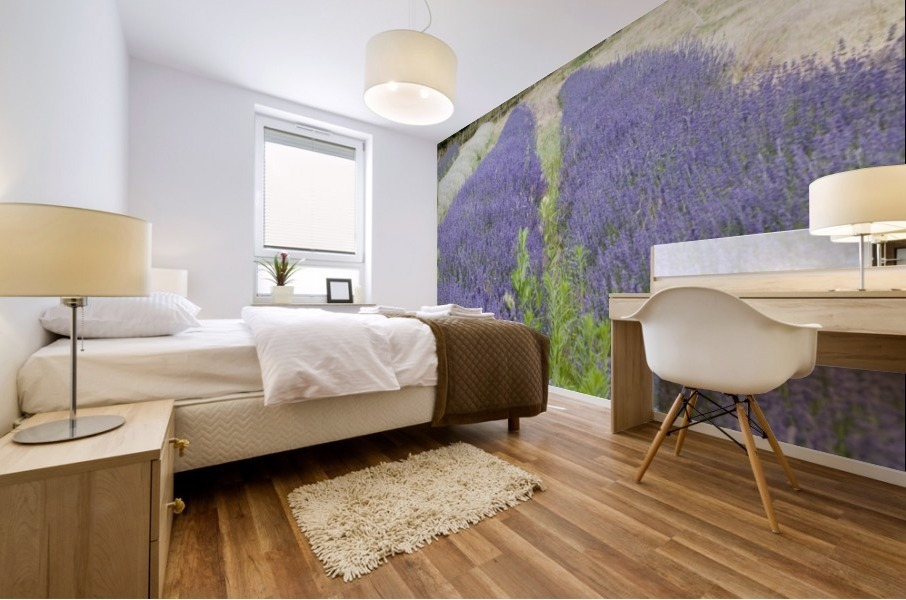 Lavender plants and fruit trees 6 Mural print