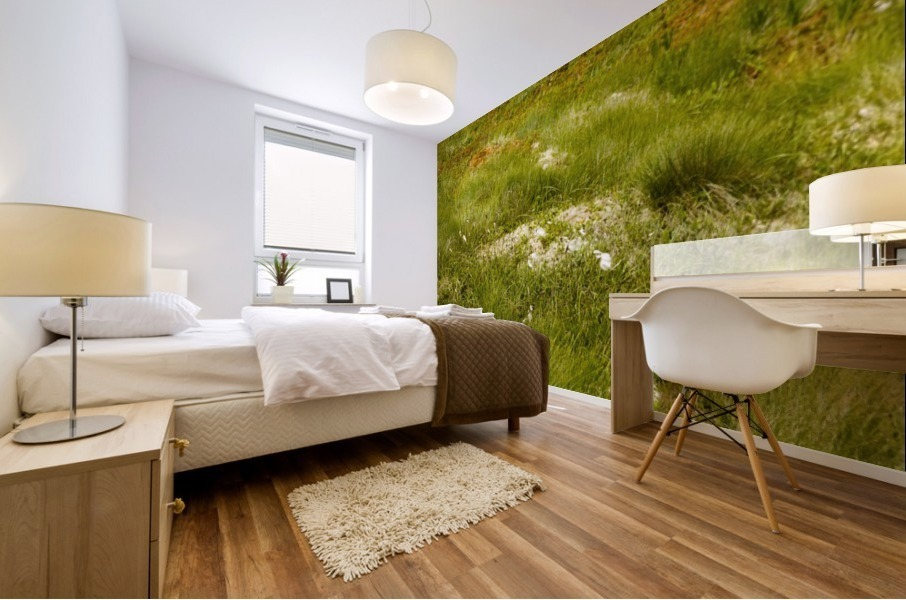 Cape Spears Flowers and vegetation 1 Mural print