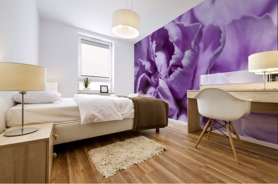 Purple Carnation Mural print