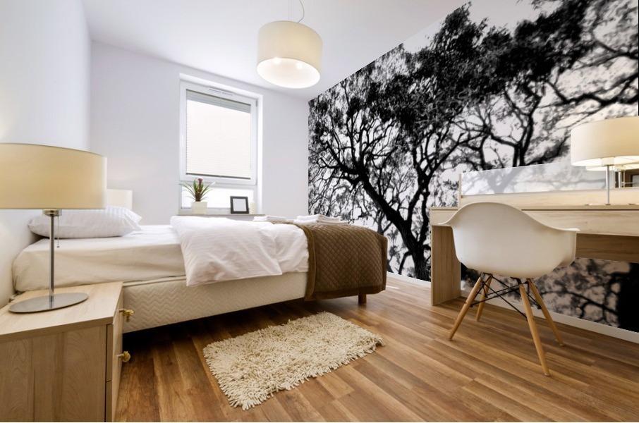 Tree Top Mural print