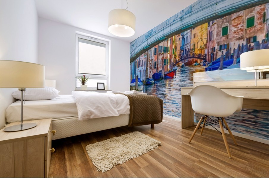 Afternoon Light in Venice Canal Mural print