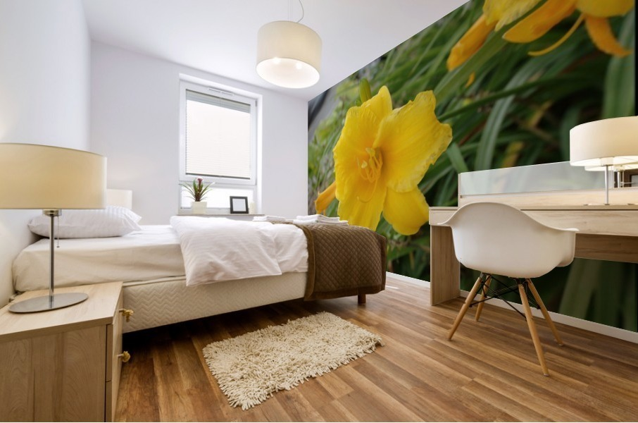 Yellow Lilly Mural print
