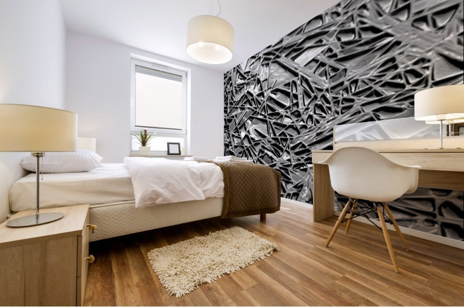 Natural Geometry Black And White Mural print
