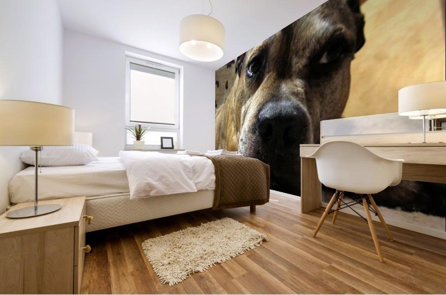 dog Mural print