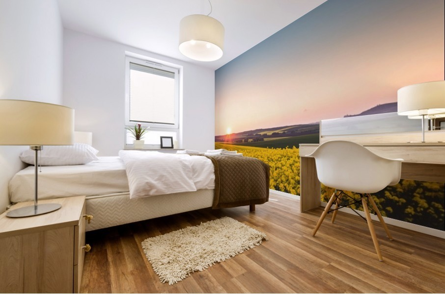 Beautiful sunset over the yellow rapeseed field. Mural print