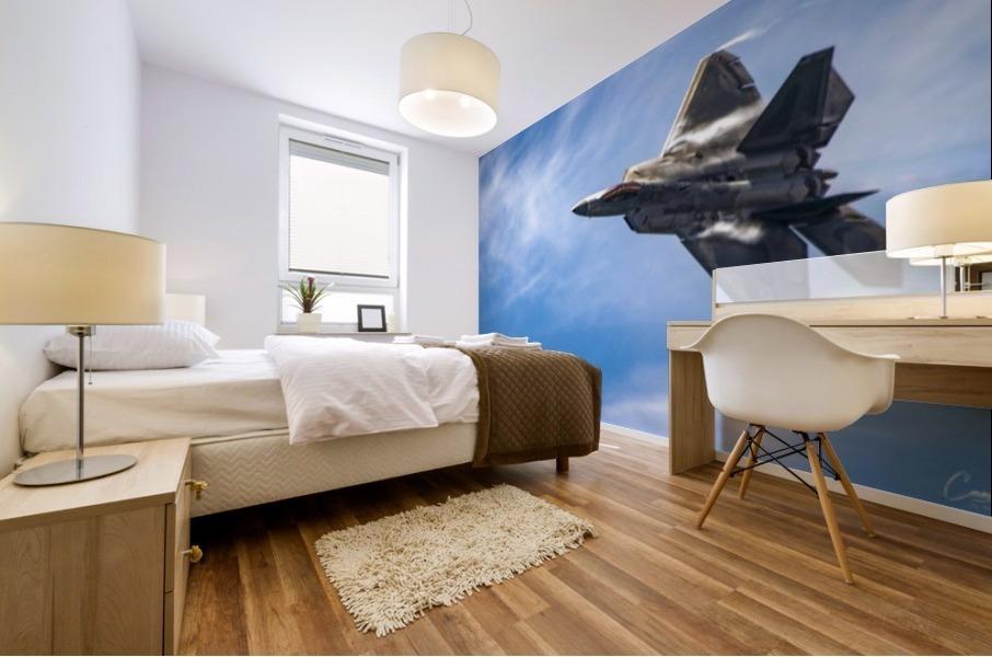 F-22 raptor Mural print