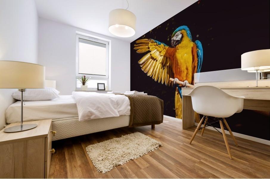 ara parrot yellow macaw bird Mural print
