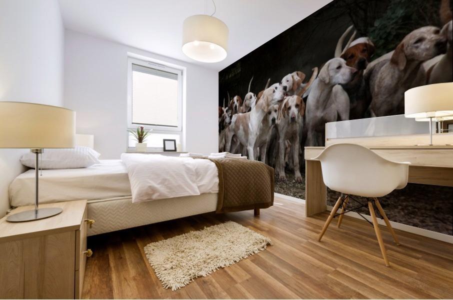 dog herd canine animal pet hounds Mural print