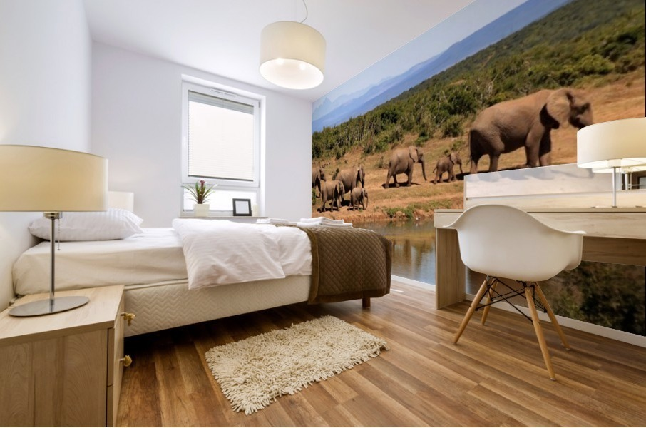 elephant herd of elephants Mural print