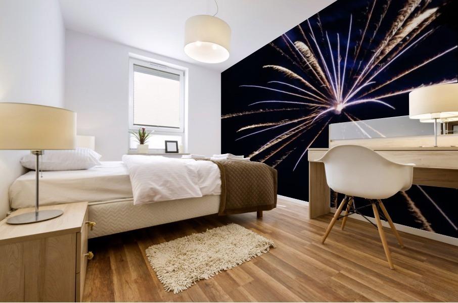 Fireworks 2019 24 Mural print