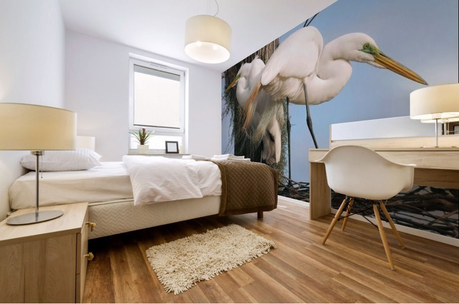 Mating Season - Great Egrets I Mural print