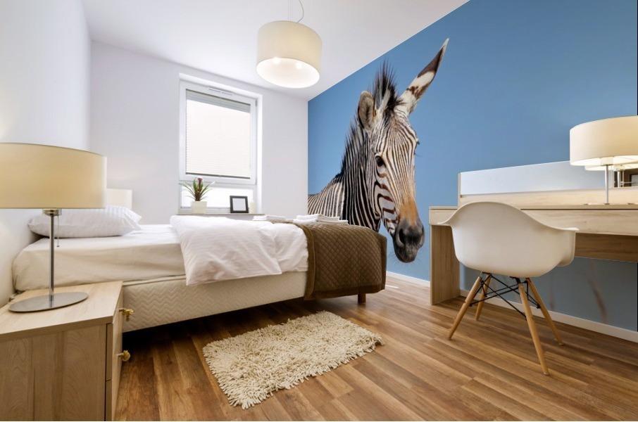 Zebra 5091 Mural print