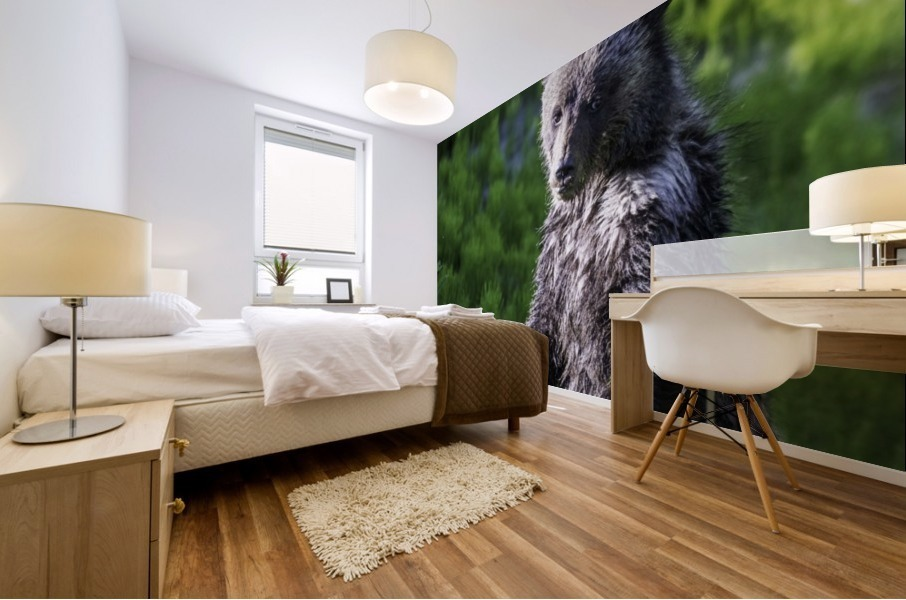 A grizzly cub named Pepper Mural print