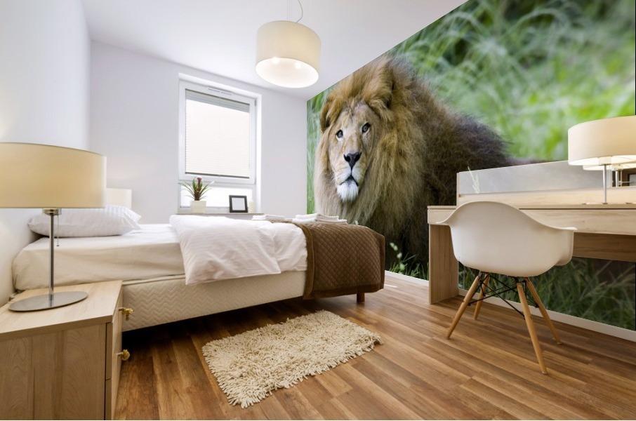 Simba Mural print