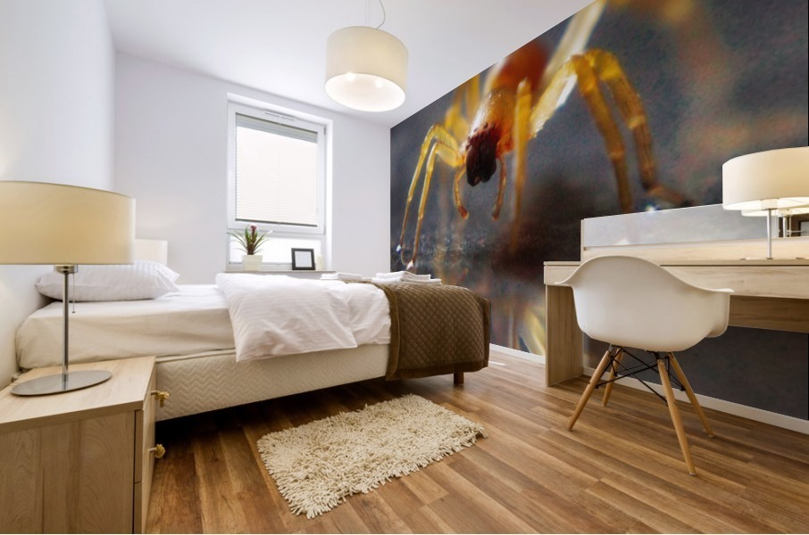 Spider reflecting Mural print