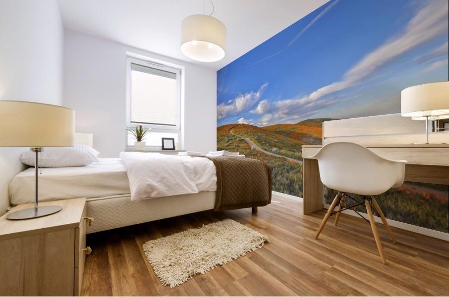 chilhood dream Mural print