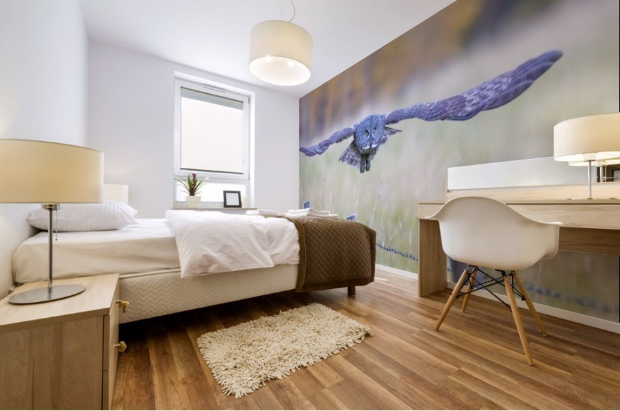 Great Grey Ow - Flat Out Mural print