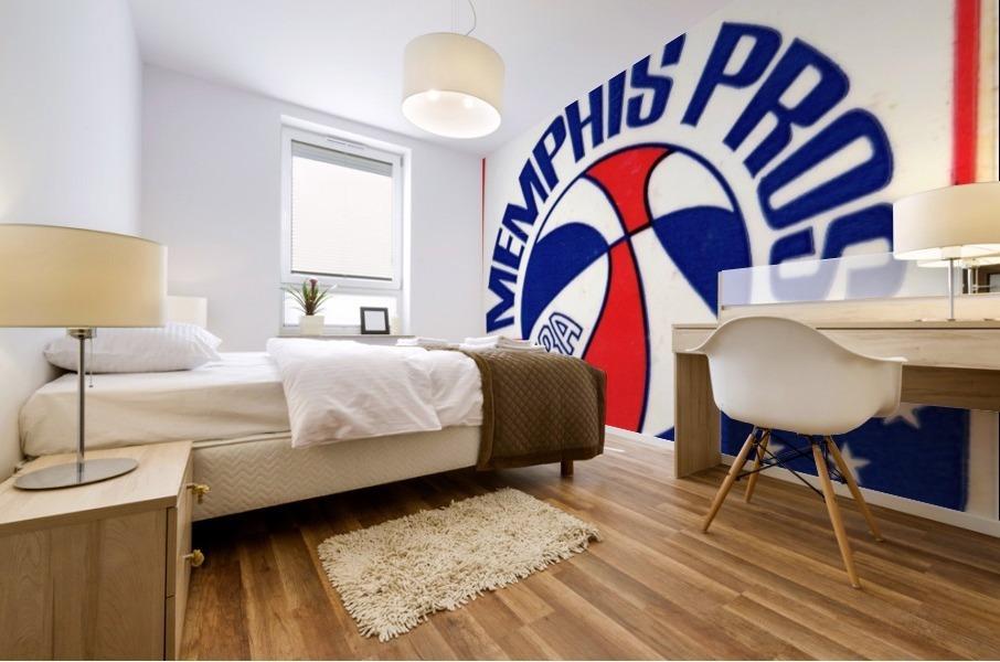 1971_American Basketball Association_Memphis Pros_Row One Brand Mural print