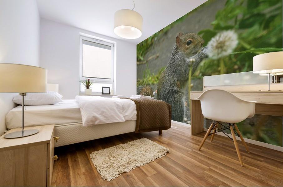 Squirrel paw warming Impression murale