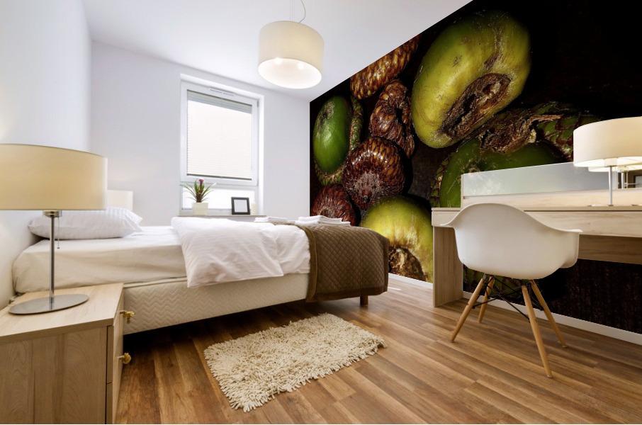 Acorn arrangement Mural print