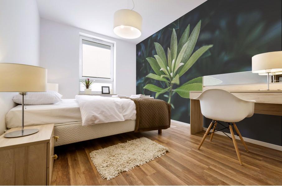 Bamboo shoots Mural print
