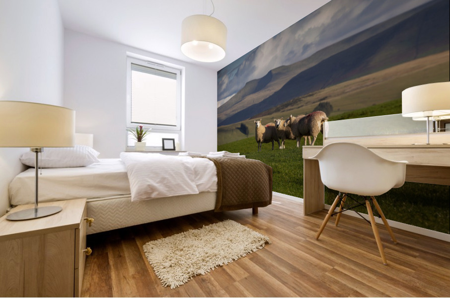 Sheep on the Brecon Beacons Mural print
