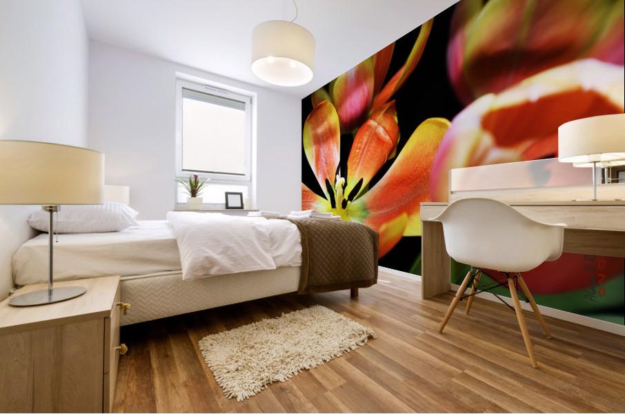 Tulip 1 Mural print