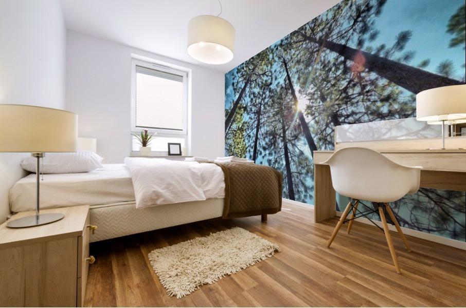 Tree Tops Mural print