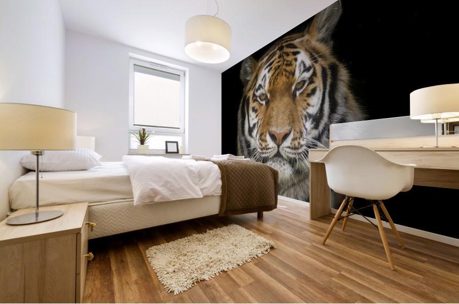 Tiger face Mural print