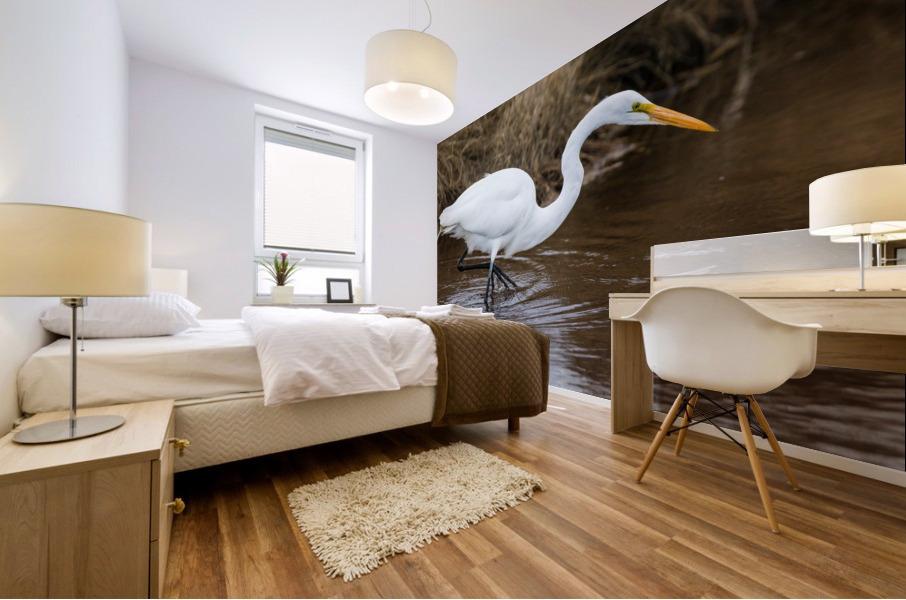 Great White Egret ap 2802 Impression murale