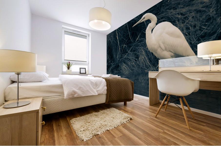 Great White Egret ap 1839 B&W Impression murale
