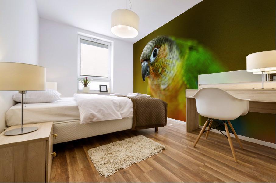 Parakeet Mural print