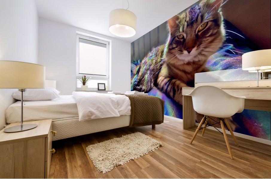 Rainbow Kitten Surprise  Mural print