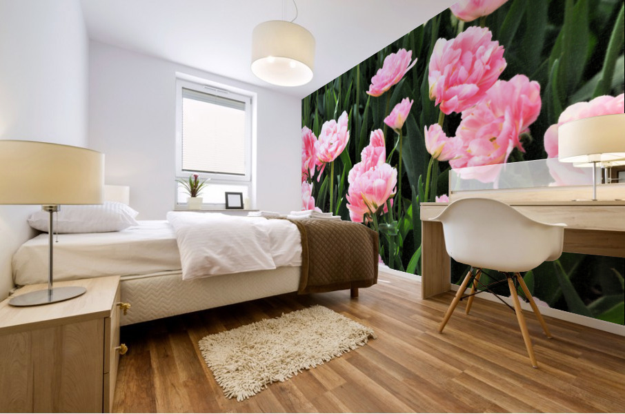 Double Pink Tulips Mural print