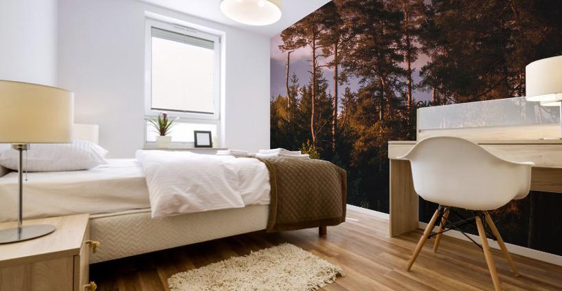 Morning forest Mural print