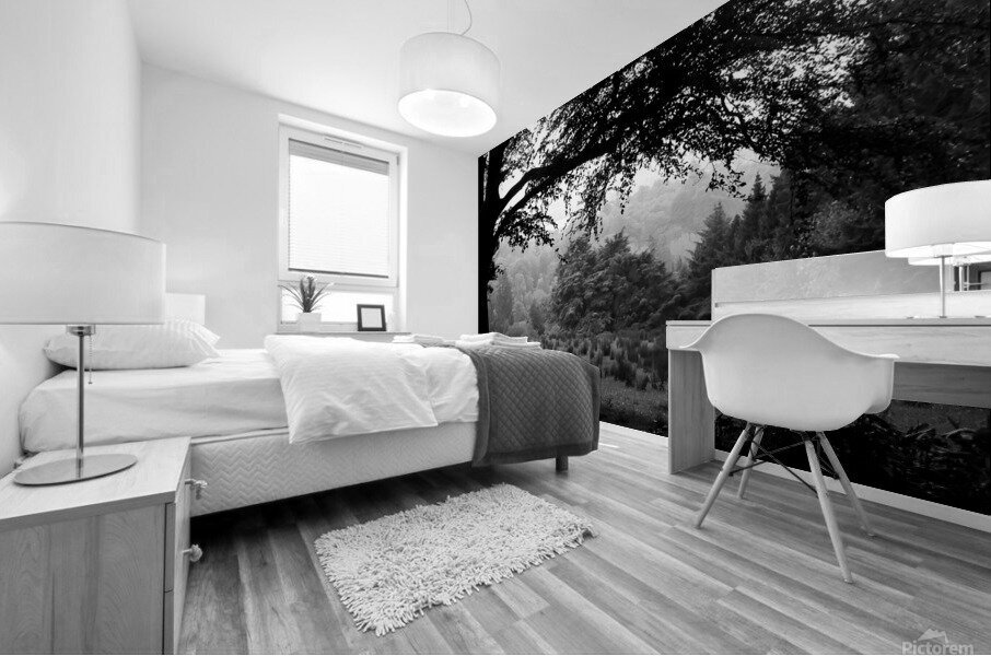 Black and White Field Mural print