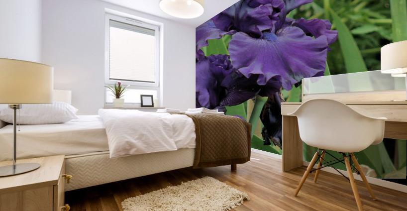 Two Iris Mural print