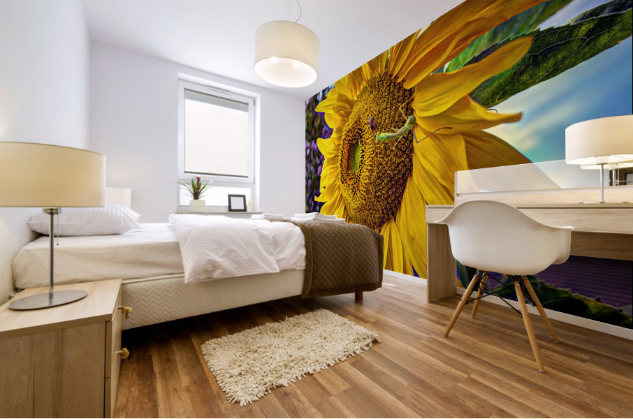 Sunflower Creative Mural print
