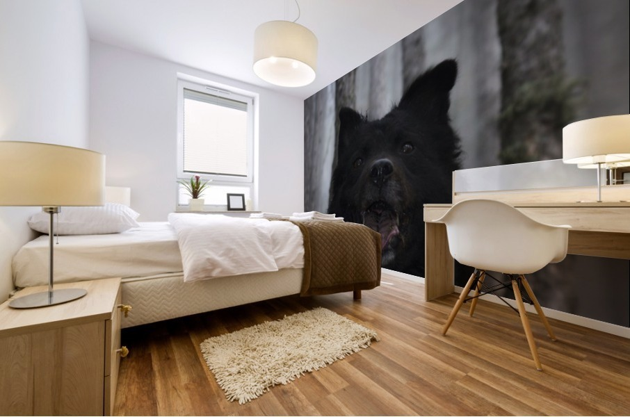 Home in forest  Mural print