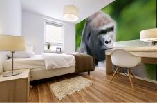 Gorilla Mural print