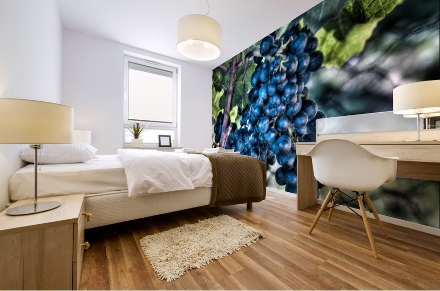 Bunches of Grapes Mural print