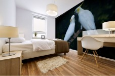 Nature and Birds   15 Mural print