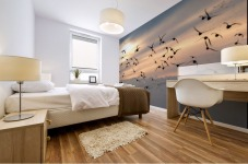 Coming home to roost Mural print