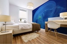 Moon Jelly Mural print