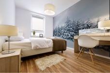 Snow Mural print
