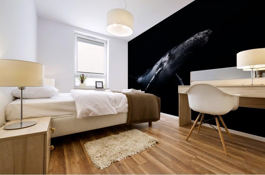 Black & Whale Mural print