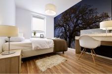 The Wishing Tree Mural print