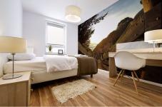 Montara Mural print